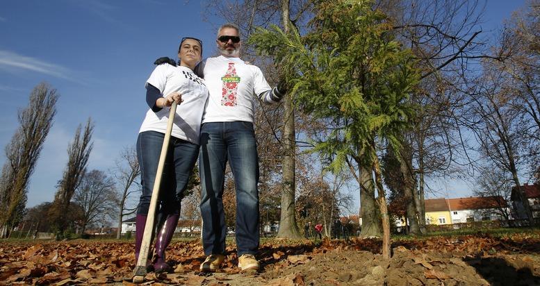 Pozega, 19.11.2015 - Ozujska pivovara donirala Gradu Pozegi 13 stabala egzoticnog drveca