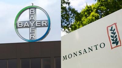 Bayer-Monsanto-midi