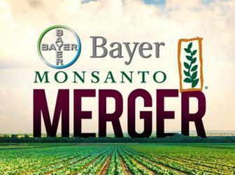 Bayer-Monsanto-preuzimanje-midi