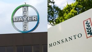 Bayer-Monsanto-thumb 300