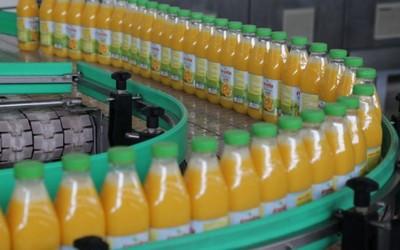 fruvita-izvoz-u-rusiju-midi