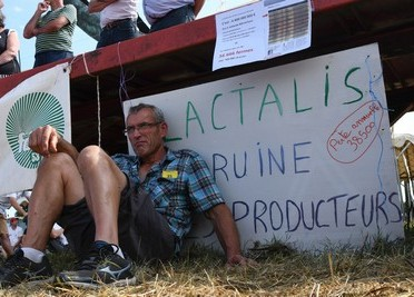 Lactalis-pregovori-proizvodaci-mlijeka-midi