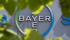 bayer-gmo-thumb-300