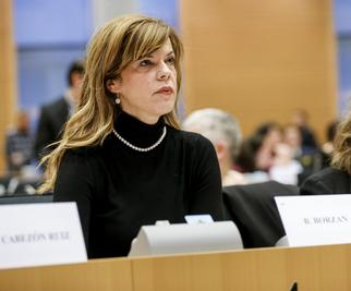borzan-europarlament-midi