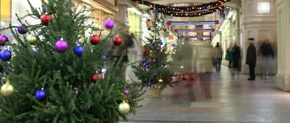 bozic-drvce-ukrasi-kupovina-ftd