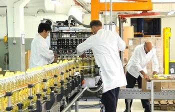 cepin-tvornica-ulja-radnici-midi