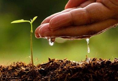 ekoloska-poljoprivreda-eko-midi