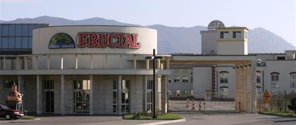 fructal-podjetje-ftd