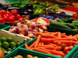 hrana-povrce-small-midi