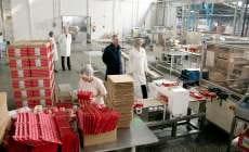 karolina-proizvodnja-midi1