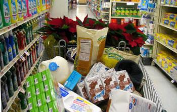 kolica-trgovina-proizvodi-midi