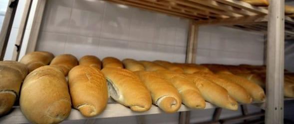 kruh-polica-ftd