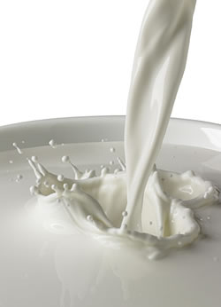 mlijeko-vizual-midi1