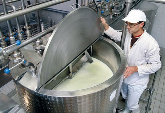 mljekarska industrija