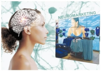 neuromarketing-midi