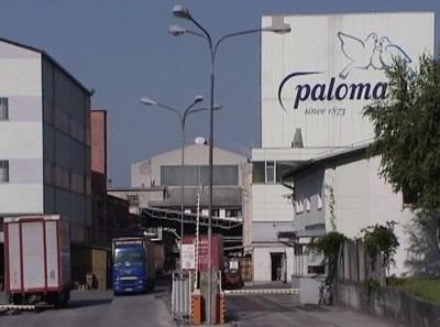 paloma-slovenija-eco-invest-midi