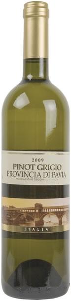 pinot-grigio-provinzia-di-pavia