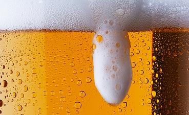 piva-pivska-industrija-midi
