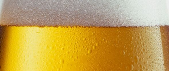 Pivo ftd