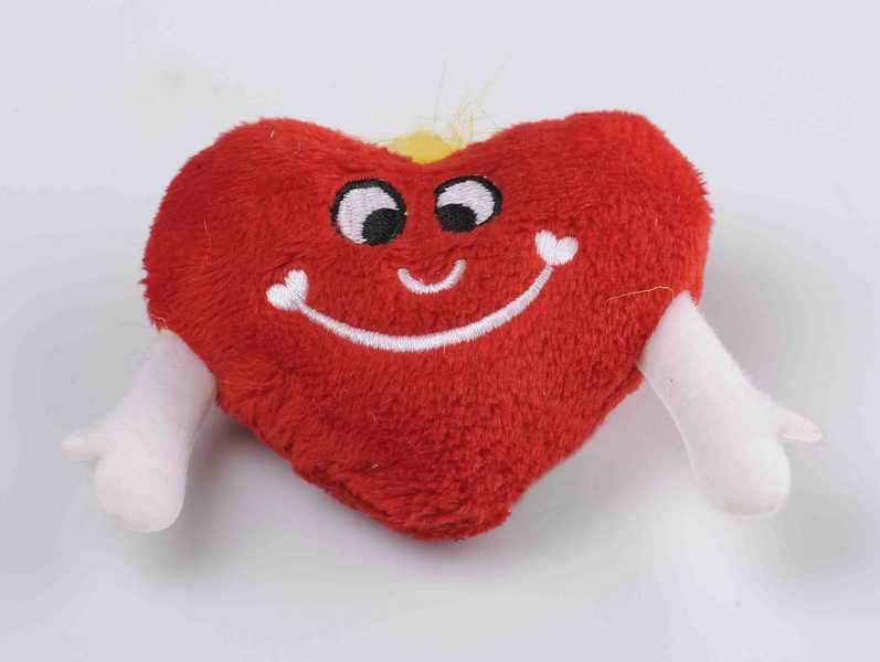 plisani-magnet-srce
