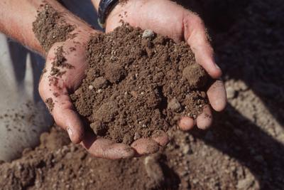 eko-poljoprivreda-zemlja