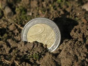 poljoprivredni-poticaji-300x225