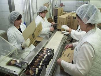 proizvodnja-radnice-midi