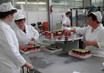 proizvodnja-radnice-midi1