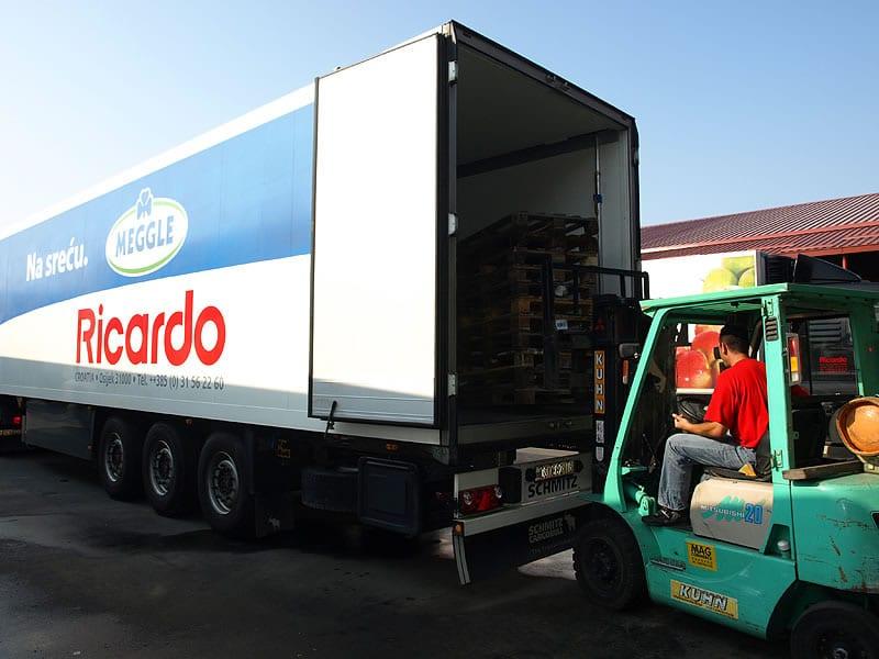 ricardo-meggle-kamion-large