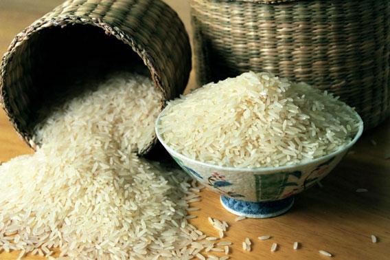 riza-zdjela-midi