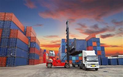 robni izvoz