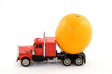 transport-vizual-kamion-limun-midi