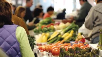 trgovina-prehrambeni-proizvodi-midi