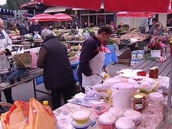 trznice-sir-vrhnje-prodaja-midi