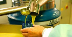 ulje uljane repice