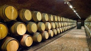 vino-proizvodnja-thumb-300