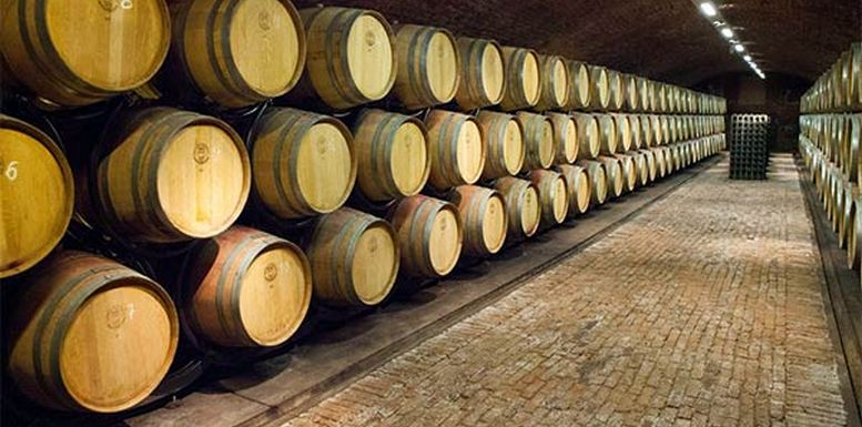 vino-proizvodnja