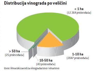 vinogradi_pita